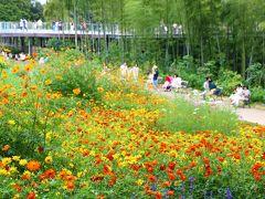 今年も、里山ガーデンフェスタへ・・・