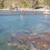 2018年9月 油壺荒井浜で最後の海水浴、のつもりが二週間後に「黒崎の鼻」、そして10月にまた泳いだ