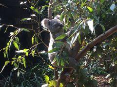 のんびりシドニー6日間の旅(2)