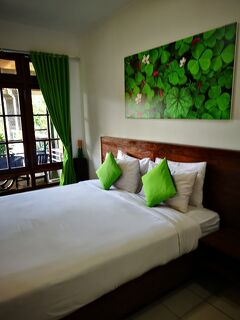 2018SW Bali Wirasana Inn