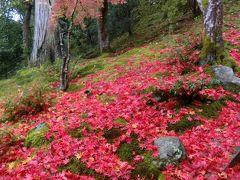 素晴らしい紅葉を見に!いざ京都、奈良へ、テクテク1人旅。嵐山、天龍寺、常寂光院、西芳寺、鈴虫寺②
