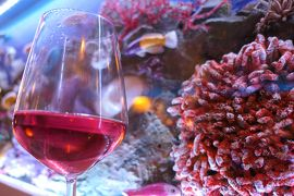 美しき南イタリア旅行♪ Vol.319(第10日)☆ガッリーポリ:人気リストランテ「L'Angolo Blu」水族館ディナー♪