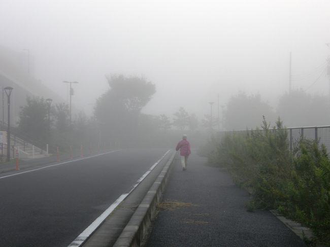 何時ものように、早朝5時前に目を覚まし、薄暗い外を眺めると家から見える景色は、霧の中の月でした。<br />この状況から、毎朝のハイキングコースでは、幻想的な風景が見られるのではと・・・カメラを片手に、家内と何時ものコースに出発。コースは、毎朝、1時間強、12.000歩ほど歩いています。<br /><br />今日は、幻想的な景色を撮りたいので、人家が多い地区は、霧が晴れてしまうかもしれないと思い、何時ものコースを逆にしてコース設定して、撮影しながら歩きました。<br />