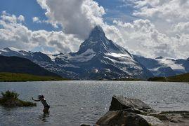 花とスイス(5)ツェルマット周辺 <晴れ時々曇り> 花とアルプスの景色に感動後、ゴンドラに乗り遅れ焦る