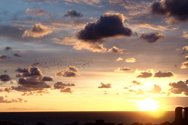 魔女の宅急便風で有名な島、ゴットランド島目指して7泊9日フィンランド・スウェーデン・エストニアを船でぐるりと。<br /><br />1日目 成田→Helsinki→船泊 <br />2日目 Stockholm→船→Gotland島(Visby)←今回ココ<br />3日目 Visby<br />4日目 Visby→飛行機→Stockholm<br />5日目 Stockholm→船泊<br />6日目 Tallinn→船→Helsinki<br />7日目 Helsinki<br />8日目 Helsinki→帰国便<br />9日目 帰国<br /><br />魔女の宅急便で有名なゴットランド島。てっきり九份とかと同じでぽいっていうだけのところかと思ってたらスタッフがロケハンに来ているガチでモデルだったんですねそうだったんだ。<br />地図で大きいな~と思ってはいたけれど面積3183km2で東京都よりでかい。メインの港のあるVisbyを中心に郊外バスが出てはいるけれど今回はVisby周辺のみでゆっくり過ごした。Visbyは12世紀に造られた街を囲む城壁が保存状態よく残っており世界遺産らしいですよ。<br />9月末のVisbyはすっかりシーズンオフで合言葉はSEE YOU NEXT SUMMER!(帰りの空港バスを調べたらホームページにでかでかと書いてあった。)