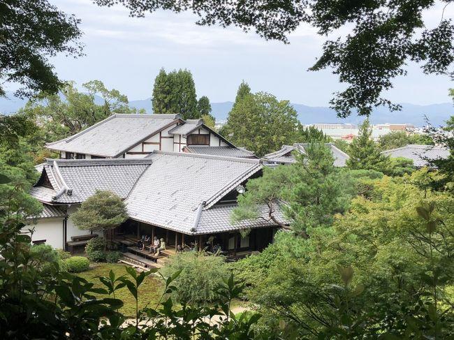 9/23(日)17時にいとこと共に、京都に住む知人と先斗町で待ち合わせ・・・<br />9月末で床が終わるので招待してくれました。<br />食事の後、自宅へ泊めて頂き、<br />9/24(祝)宿泊先を後に・・近くをぶらぶらすることに<br />で、青蓮院門跡、フォーエバー現代美術館、建仁寺へ<br />青蓮院門跡では庭でたぬきと遭遇~<br />受付の方に「たぬきがいました」と伝えると<br />「きつねはよくいますが、たぬきはめずらしい。<br />東山からおりてくるのかな」と言われました<br />それにしても、人慣れしてるのか べたっと寝そべってたけど・・・<br />祇園白川では「櫛まつり」の行列に遭遇しました。<br />建仁寺は写真撮り放題でした<br />京都までの道のり。いつもは在来線を利用しますが、<br />今回は前の予定から時間が間に合わず、新幹線を利用。<br />帰りもリッチに新幹線を利用してしまいました。<br />久々の新幹線はやっぱり早いなwww<br /><br />