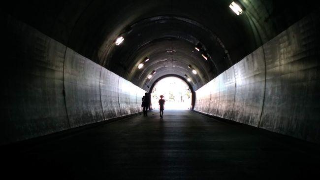 東急東横線は、2004年に東白楽駅 - 横浜駅間を高架線から地下線に切り換え、反町駅と横浜駅が地下ホームとなった。横浜みなとみらい線との相互直通運転も開始して、中華街などに行くのにも便利になった。しかし、横浜駅での地上に出るのは地下鉄の深度が深くて不便になった。(後の渋谷駅地下化でも同じ)<br />東横フラワー緑道は、東急東横線の地下化により東白楽駅 - 横浜駅間の線路跡に横浜市によって整備された延長約1.4kmの緑道(公園)。2006年から2011年までかかって完成した。<br />フラワー緑道の名前の通り、緑道には花壇がいくつか設置されており、ベンチでゆっくり休むことも出来る。<br /><br />その後、横浜のKAAT神奈川芸術劇場に演劇鑑賞の前に時間が有ったので、山下公園も散策して海を眺めた。 <br />(カメラは、コンデジが使えなくなりスマホ撮影です)