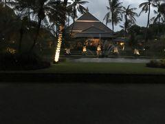 バリ島 今回は2人で彷徨い(SINGA経由)帰りはシンガポールでアイスを食す