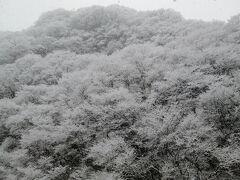 2017冬 行くぜ、東北。その2温泉宿泊