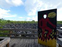 ケイマン諸島その2 タートル・センター&ヘル(Cayman Turtle Centre & Hell, Cayman Islands)