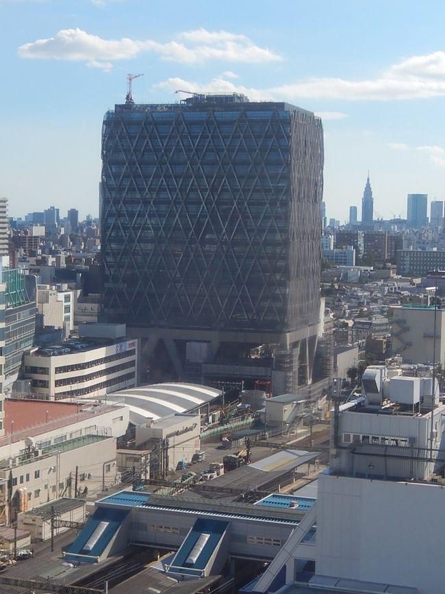 10月7日、午後1時半頃に東武百貨店レストラン街ダイニングシティに行き昼食後15階より見られる風景を写真撮影しました。<br />西武鉄道本社ビルや西武百貨店遠くには新宿・代々木のNTTドコモビル等が見られました。<br /><br />〇西武鉄道本社ビル建て替え<br /> 2019/3竣工 20階建て 高さ100m 西武ホールディング、プリンスホテル、西武鉄道等の会社が入る。<br /><br />*写真は西武鉄道本社ビル建設中と右端遠くに新宿の高層ビル群