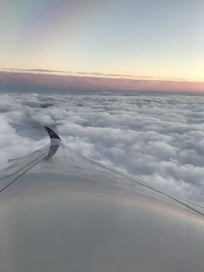 本当に久しぶりのスイス旅行。<br />今回は関空発のタイ航空でスイスに向かいます。<br /><br />スケジュール:<br /><br />◆1日目:関空発タイ航空でチューリッヒに移動<br />◆2日目:チューリッヒ→ベルン 市内観光 ベルン泊<br />◇3日目:ベルン→ツェルマット ハイキング ツェルマット泊<br />◇4日目:ハイキング ツェルマット泊<br />◇5日目:ツェルマット→シュピーツ→トゥーン→ルツェルン ルツェルン泊<br />    ※シュピーツ→トゥーンは船で移動<br />◇6日目:ルツェルン→チューリッヒ移動 市内観光 チューリッヒ泊<br />◇7日目:チューリッヒ発タイ航空で関空に移動<br /><br />6日目以外の移動手段は、電車です。<br />事前にアプリをダウンロードしてチケットは事前に予約済。<br />スイス ハーフフェアカードの購入+Super saver ticket(早割り)を購入することで、交通費を節約(笑)<br />登山電車もケーブルカーも半額になりました。