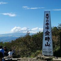 「ゆめこ」ちゃんで行く 晴れ男1年振りの山行は金時山日帰りでした