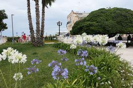 美しき南イタリア旅行♪ Vol.402(第14日)☆オートラント:花いっぱいのドンノ広場♪