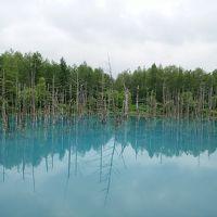 花いっぱい北海道②~青い池・四季彩の丘