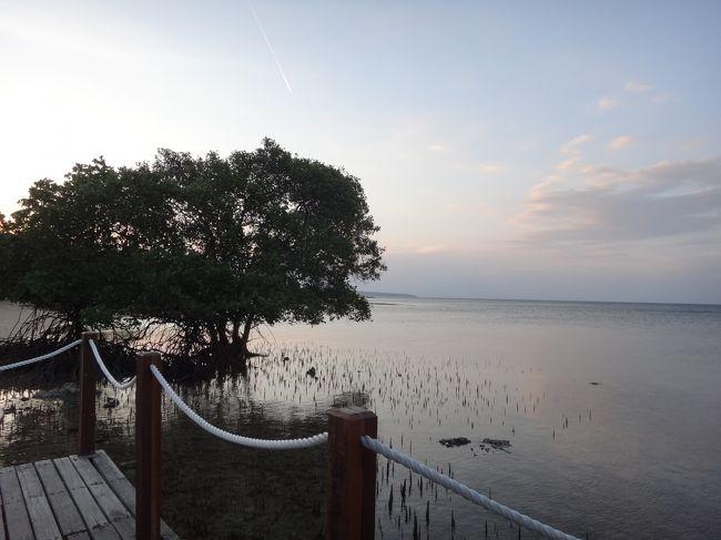 バリ島に住む友人に会いに、3度目のバリ島旅行へ。<br />友人がお気に入りのメンジャンガンをお勧めしてくれたので、2人で一緒に行くことにしました。<br />メンジャンガンは友人にとってはパワースポットだそうです。<br />私もパワーチャージ出来るかな?<br /><br />9月2日 夕方にバリ島に到着後、車でThe Menjangan Resortへ メンジャンガン泊<br />9月3日 終日The Menjangan Resort リゾート内散策・エステなど メンジャンガン泊<br />9月4日 終日The Menjangan Resort バードウォッチング メンジャンガン泊<br />9月5日 クロボカンに移動 スミニャック散策・ショッピングなど クロボカン泊<br />9月6日 ビーチ沿いのカフェで朝食 帰国<br /><br />☆2011年の旅行ですが、2018年に旅行記を作成しました。「当時は…」「今では…」などの記載があるのは、その為です。