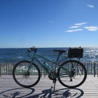自転車でアジフライを食べにポタリング