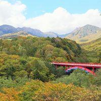 初秋の山梨ドライブ(その2)《清里・野辺山・八ヶ岳編》