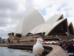 シドニー 観光3