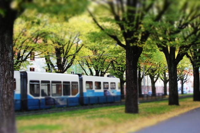 良いお天気に恵まれた週末、<br />秋色の風景を堪能すべく、<br />家族でヨーテボリ植物園、Slottsskogenへ。