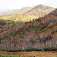 2018長野秋旅02 白馬ゆるゆるハイキング お洒落な紅葉 栂池自然園