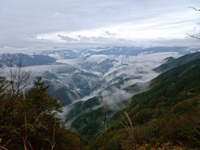 ずっと行きたかった大台ケ原へ行って来ました。<br />大台ヶ原山は日本百名山の一つ。日本百景、日本の秘境100選にも選定され、吉野熊野国立公園の特別保護地区などにも指定されています。<br /><br />前日の天気予報では、曇りの予報で、途中の道路は靄がかかり10m先も見えないところもありました。雨の多い大台ケ原、大丈夫か。<br />とりあえず駐車場まで行ってみると、歩けそうな雰囲気。<br /><br />東大台ヶ原完全クリアコース<br />大台ヶ原駐車場 ー 日出ヶ岳 ー 正木峠 ー 正木ヶ原 ー 尾鷲辻 ー 牛石ヶ原 ー大蛇グラ ー シオカラ谷吊橋 ー 大台ヶ原駐車場<br />全然簡単に制覇できると思っていたのに、シオカラ谷吊橋から駐車場までの最後の上り坂でめげそうになりました。<br />体力不足、太りすぎを実感。ちょっと甘く見ていた大台ケ原、失礼しました。<br />とても疲れたけど、本当にきれいで、断崖絶壁の大蛇ぐらは迫力満点でした。紅葉はもう少しかな。<br /><br />