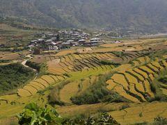 ツアーでGO インド・ブータン 楽烙旅 ⑤プナカへ 桃源郷はどこに?