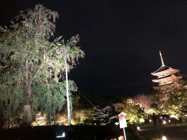 2018年10月に京都に日帰りで行ってきました。午前中から夜までみっちり遊びました。今回は夜編という事で、実はこれが今回の目的だったのですが、東寺のライトアップと特別の食事会&演奏会という企画をJCBカードがやっていたのを申し込んで参加してきました。プライベートのツアーはなかなか楽しかったです。<br />