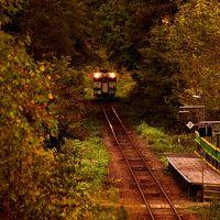 秋の北海道、道央地方を巡る旅 ~廃止路線に向かっている?JR札沼線の紅葉を見に訪れてみた~