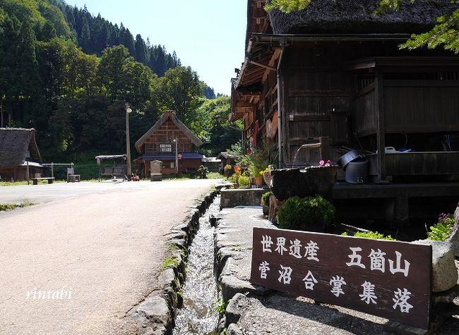9月27日(木)から9月29日(土)まで北陸をドライブしてきました<br /><br /><br />石川県~岐阜県~富山県~福井県<br />2泊3日で4県を巡る北陸ドライブの旅<br />相変わらずのアクティブな旅となりましたが、こういう旅が私らしいな~♪と思います<br /><br />暑さ寒さも彼岸まで<br />行楽の秋♪ スポーツの秋♪ ドライブの秋♪<br />食欲の秋♪ 芸術の秋♪ 読書の秋♪<br />「秋を探そう♪」 これが旅のテーマに決定♪<br />いくつの秋を探しに行けるかな?!<br /><br />長崎から金沢へ行くにどうやったらお安く行けるか?!<br />①長崎~(飛行機)~東京~(北陸新幹線)~金沢<br />②長崎~(JRかもめ)~福岡~(飛行機)~金沢<br /><br />70代のおばばが一緒なので移動が少ない②に決定♪<br /><br />①北陸ドライブの旅 秋を探しに行こう♪ 福岡~金沢編<br />https://4travel.jp/travelogue/11411501<br /><br />②北陸ドライブの旅 秋を探しに行こう♪ 白川郷編<br />https://4travel.jp/travelogue/11414066<br /><br />③北陸ドライブの旅 秋を探しに行こう♪ 菅沼集落編<br />https://4travel.jp/travelogue/11414071<br /><br />④北陸ドライブの旅 秋を探しに行こう♪ 根上~金沢編<br />https://4travel.jp/travelogue/11423175<br /><br />⑤北陸ドライブの旅 秋を探しに行こう♪ 東尋坊~小松編<br />https://4travel.jp/travelogue/11424938<br /><br />