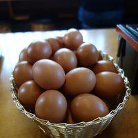ここの「卵かけご飯」が食べたいばっかしに,名古屋からクルマを走らせる。