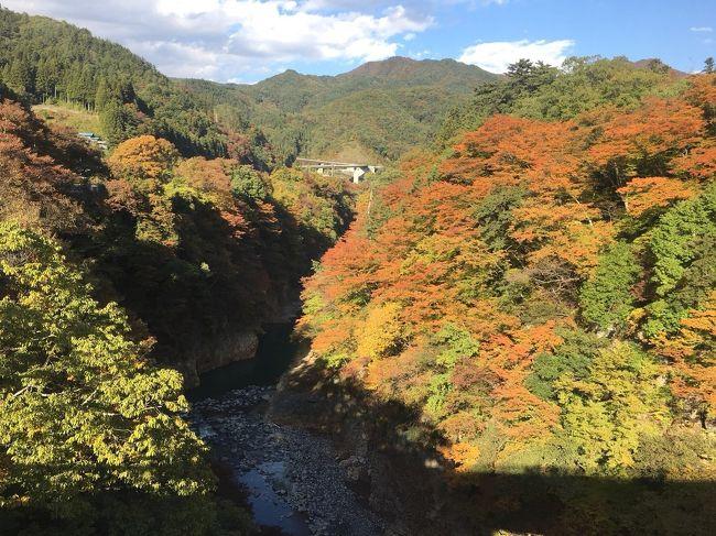 久しぶりの家族旅行♪<br /><br />本当は夏に企画していたんだけど、猛暑で温泉気分ではなかったため、秋の紅葉シーズンにしました。<br /><br />今回のメインは草津温泉と軽井沢。<br />紅葉真っ盛りの山々は赤や黄色に彩られて、とっても綺麗でしたw<br />温泉に入って、美味しい食事をして、運転手付き(旦那ですが…)の、楽しい旅行になりました。