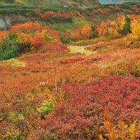 絶景の立山を満喫する山旅3泊4日 その5紅葉が最盛期の室堂散策編