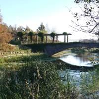 エクシブ浜名湖と浜名湖ガーデンパーク
