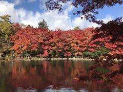 紅葉の草津温泉と軽井沢でまったり【2018.10】…雲場池は真っ赤っ赤~♪アウトレットでお買い物《3日目》