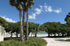 美しき南イタリア旅行♪ Vol.443(第16日)☆オートラント:朝日を浴びて輝くドンノ広場♪