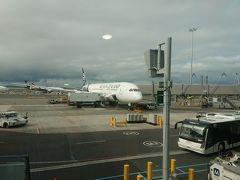 価値あるANA52,500マイル! ニュージーランド航空のビジネス利用でオークランドへ。