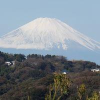 祇園山見晴台から見る冠雪した富士山