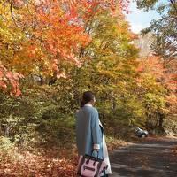 3世代で楽しむ紅葉!in八ヶ岳高原(標高1500~1300mまでが見頃)