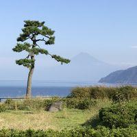 「世界遺産 富士山を望む宿 富岳群青」で祝う結婚記念日