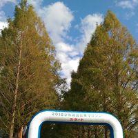 琵琶湖西岸の高島市 穴場いろいろ発見