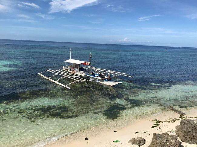 僕の還暦を記念して嫁さん、そしてダイビング仲間と一緒にフィリピン・ボホールのダイビングツアーに行ってきました。<br />今回お世話になったのはノバビーチリゾート。<br />ボホールにある日本人経営のビーチリゾートです。<br />人気のアロナビーチからは少し離れていますが、その分静かな雰囲気を楽しむことができる、大人の隠れ家のようなリゾート。<br />日本人インストラクターが常駐しているダイブショップも併設していて、ダイビングにはベストの環境です。<br />実は約15年前、このリゾートのオープン当初に一度訪れたことがありました。その時は隣のリゾートの施設を一部借りるなどまだ未完成の状態でした。それからどれだけ変貌したかも楽しみでした。<br />当初は5月のゴールデンウィークで考えたのですが、予算が倍ほど違ったので、ゴールデンウィーク明けの5/9~13の実施となりました。<br />結果、リゾートも空いていて、とってもいいツアーになりました。<br />ツアーはワールドツアープランナーズの「フィリピン航空セブ1泊&ボホール9ダイブ付き 5日間 関空発着」を利用です。<br /><br />