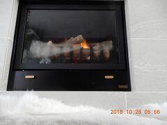 陰陽道 東京の避寒地の一つの「南伊豆下田」 {ハイビスカス(南国から密輸)}(暖炉と床暖房等)で元気です。
