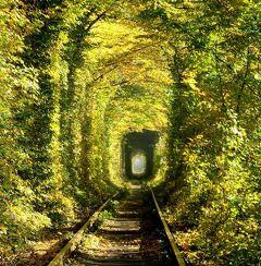 団塊夫婦のヨーロッパ紅葉を巡る旅・2018ー(2)ウクライナ1・紅葉時もすばらしかった愛のトンネルへ