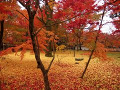 素晴らしい紅葉を見に!いざ京都、奈良へ、テクテク1人旅。永観堂、南禅寺、銀閣寺編④
