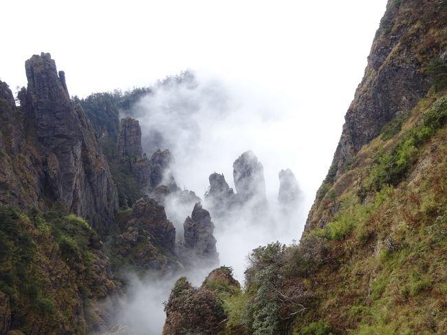 日本人でこの場所を知っている人はそう多くはないと思いますが、神農架は野人伝説が残る自然豊かな場所で、希少な動植物が沢山生息しています。2016年に世界自然遺産に登録されました。 また、中国で唯一の「林区」です。<br />ガイドさんが神農は人の名前だと教えてくれました。神農皇帝が薬草を摘むために訪れたことから、その名前がついたらしいです。<br />素晴らしい雲海を見ることができたのはラッキーなことでした。<br />本当に神農架は素晴らしいところでした。