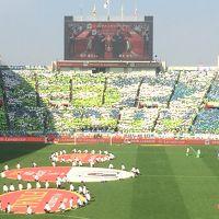 2018ルヴァンカップ決勝VS湘南戦観戦記