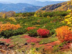 グッド・タイミング!紅葉の乗鞍・栂池自然園を巡る撮影行(1)乗鞍編
