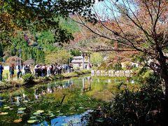 関市を行く 博物館&モネの池