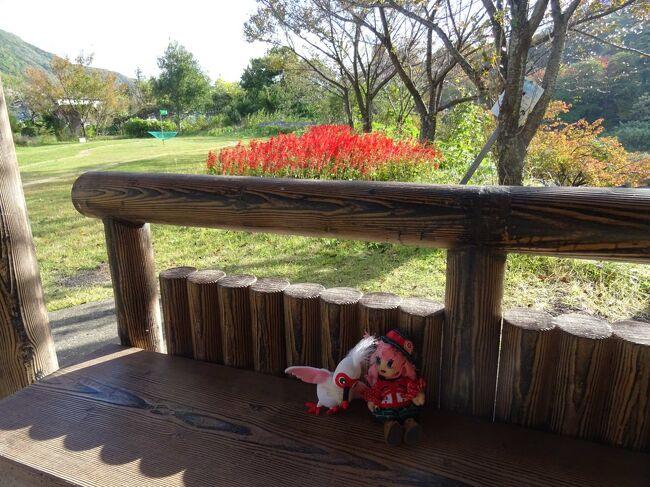 水上・越後湯沢へ、紅葉の見納めに行くヨ! 1日目・水上編